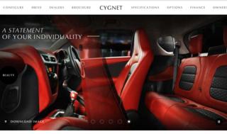 Cygnet inside